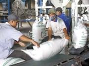 Viet Nam aumenta exportación arrocera