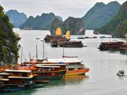 Promueven campaña a favor de la Bahía Ha Long