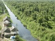 FAO ayuda a Viet Nam en la administración forestal