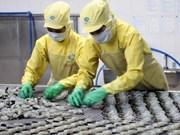 Viet Nam anuncia incremento en exportaciones