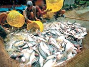 Parlamento europeo apoya importaciones acuáticas vietnamitas
