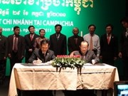 Compañía vietnamita abre filial en Cambodia