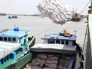 Crecen exportaciones arroceras de Viet Nam