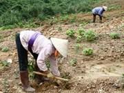 Viet Nam: alto índice de desempeño ambiental