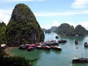 Vietravel: Mejor Agencia de viajes de Asia
