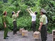 Viet Nam impulsa protección de animales silvestres