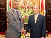 Vietnam y Sudáfrica intensifican nexos legislativos