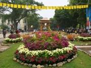 Efectuarán festivales de flores por el Año Nuevo