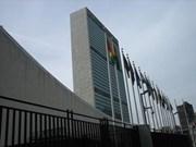 Eligen a Vietnam para comisión de la ONU