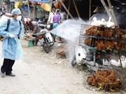 Seminario sobre lucha contra gripe aviar en Vietnam
