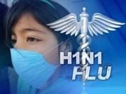 Vietnam desarrolla vacuna contra gripe aviar