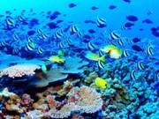 Preservación de ecosistema marino requiere de apoyo social
