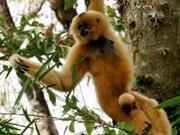 Parque nacional recibe animales en peligro de extinción
