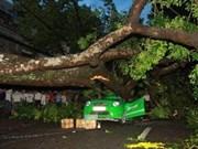 Tormenta tropical Kai Tak: tres muertos en Vietnam