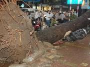 Aumentan muertos por tormenta Kai Tak en Vietnam