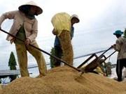 VN registra aumentos en exportaciones de arroz y textiles