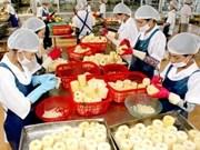 Aumentan exportaciones agropecuarias vietnamitas