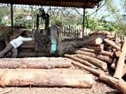Inauguran mayor planta procesadora de madera en Asia