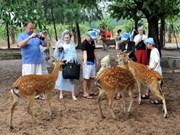 Aumenta número de visitantes a Vietnam