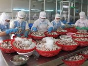 En alza comercio Vietnam-España
