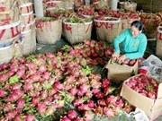 Siguen en alza exportaciones de Vietnam