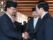 Vietnam apoyará Brunei en presidencia de ASEAN