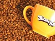 Vietnam aumentará eficiencia de producción cafetera