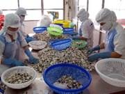 Logrará Ca Mau mil millones de dólares por exportaciones pesqueras