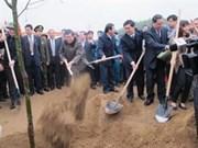 Presidente promueve campaña de siembra de árboles