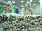 Solicitan a OMC resolver caso camarón con EE.UU