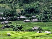 Ecoturismo exhibe belleza de aldea de Son La