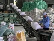 En alza exportación de arroz del delta de Mekong