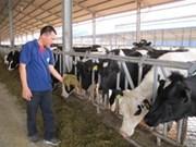 Inauguran primera planta de alimentos para ganados