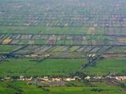 Realizan cita sobre planificación Delta del Mekong