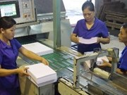 En Hanoi exposición internacional sobre industria papelera