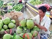Productos vietnamitas buscan afianzarse en mercado mundial