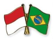 Indonesia y Brasil impulsan cooperación en biocombustibles
