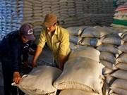 Vietnam espera exportar siete millones 500 mil toneladas arroz