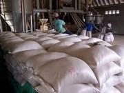 Cambodia registra fuerte aumento de exportaciones arroceras