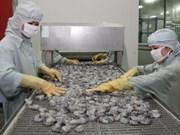 Tailandia considera importación de camarones vietnamitas