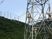 Urgen aseguramiento de progreso eléctrico en Vietnam