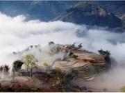 Concurso fotográfico internacional en Vietnam