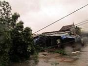 Tormenta Wutip provoca graves pérdidas en Vietnam