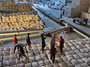 Suben cotizaciones de arroz vietnamita