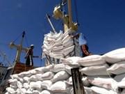 FAO pronostica abundante oferta de arroz