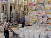 Vietnam exportará siete millones de toneladas de arroz en 2014