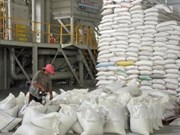 Vietnam registra superávit comercial con Malasia