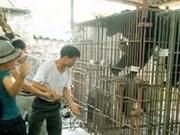 Lanzan campaña de protección de osos en Quang Ninh