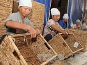 Exportación de productos de mimbre totaliza 225 millones USD