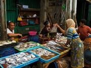 Asistencia de Suiza a acuicultura indonesia